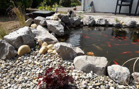 Colver créateur jardin paysagiste oise noyon compiègne création bassin ornemental eau enrochement paillage minéral